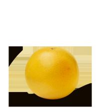 Купить грейпфрут