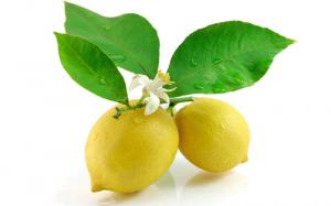 Купить лимоны